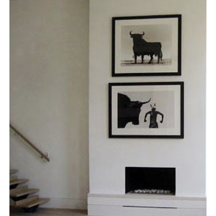 Bull Limited Edition Print