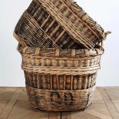 Anton & K Champagne Harvesting Baskets