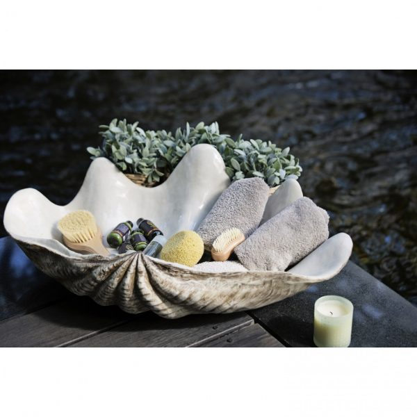 Giant Resin Stone Clam